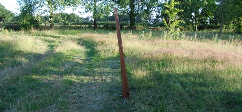 Pivert Didgeridoos_109-13
