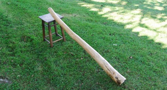 Pivert-didgeridoos_71-1